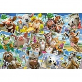 Animal Selfies puzzle 200 db-os 56294 Schmidt